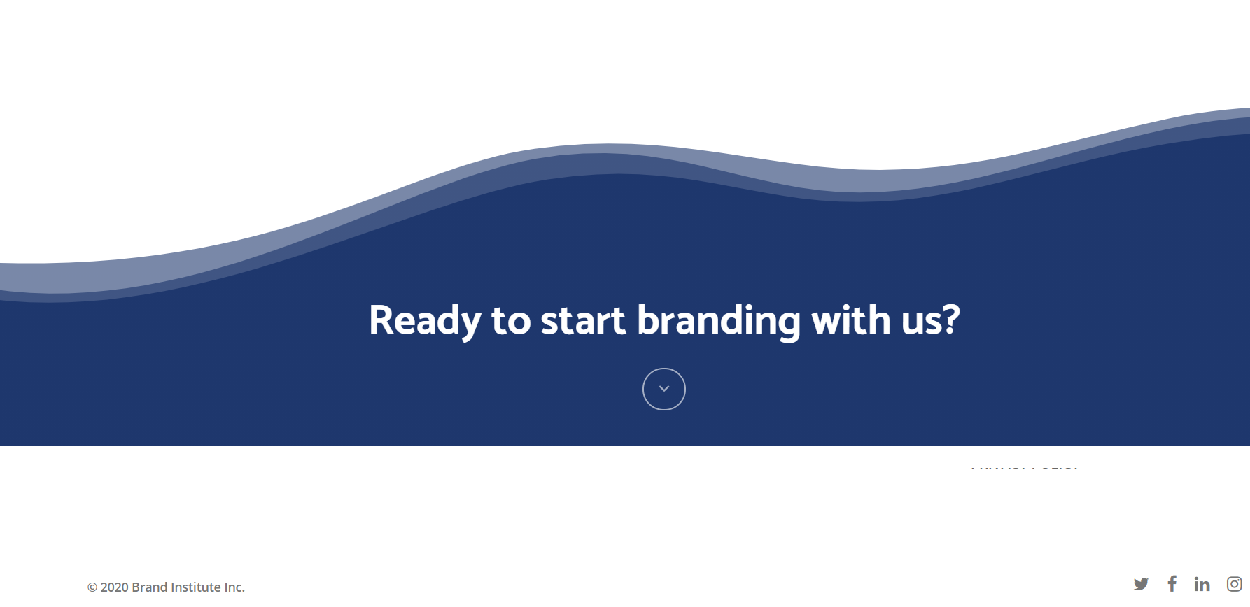 Brand Institute Review